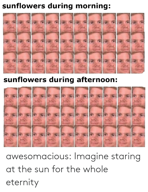 sun: awesomacious:  Imagine staring at the sun for the whole eternity