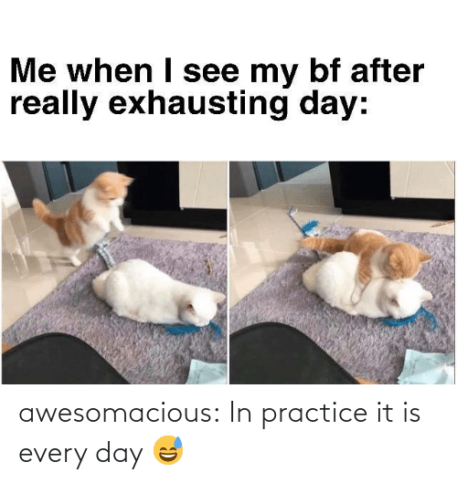 It Is: awesomacious:  In practice it is every day 😅