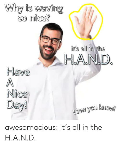 hand: awesomacious:  It's all in the H.A.N.D.