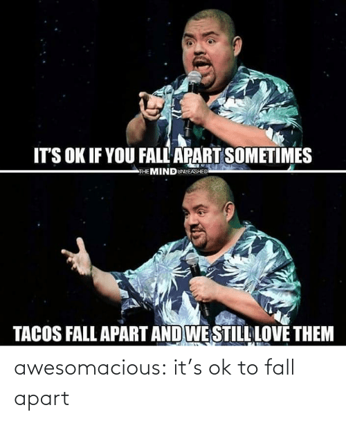Fall: awesomacious:  it's ok to fall apart