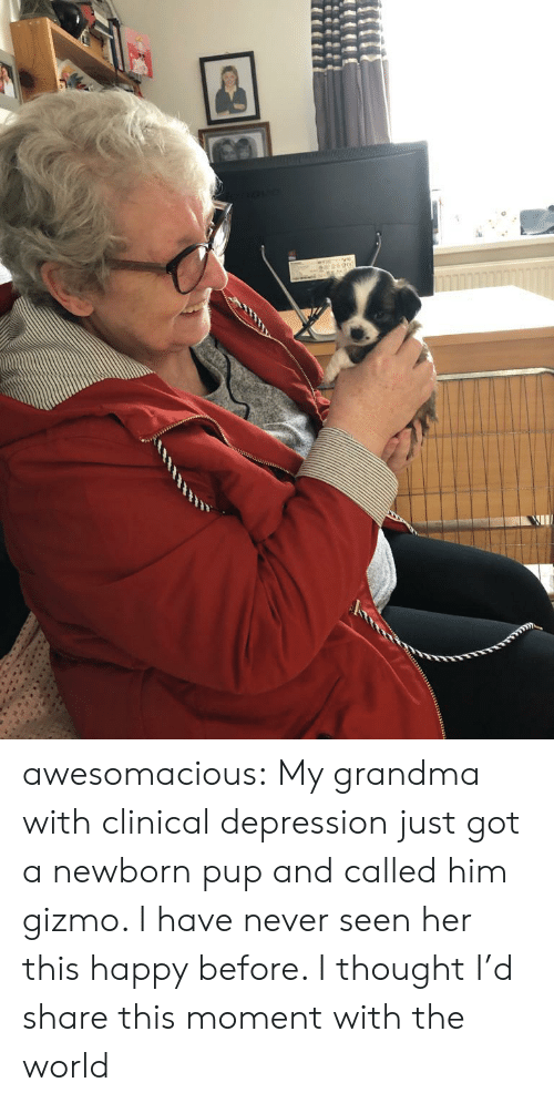 Grandma, Tumblr, and Blog: awesomacious:  My grandma with clinical depression just got a newborn pup and called him gizmo. I have never seen her this happy before. I thought I'd share this moment with the world