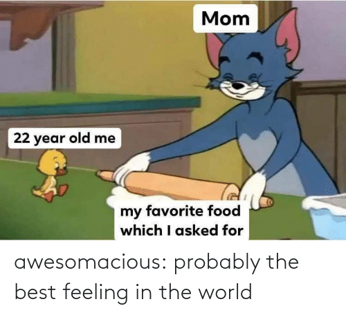 The Best Feeling: awesomacious:  probably the best feeling in the world