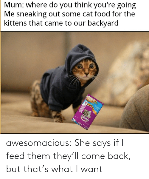 But That: awesomacious:  She says if I feed them they'll come back, but that's what I want