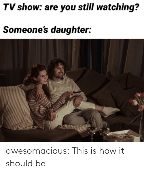 Should Be: awesomacious:  This is how it should be