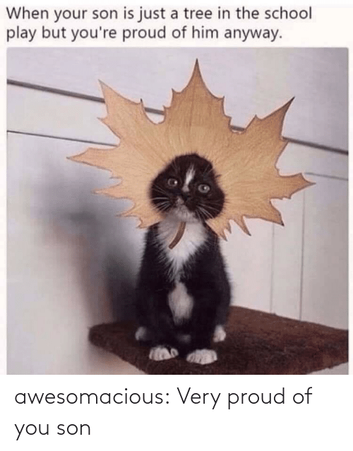 son: awesomacious:  Very proud of you son
