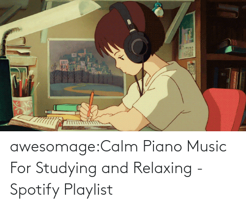 Music: awesomage:Calm Piano Music For Studying and Relaxing - Spotify Playlist