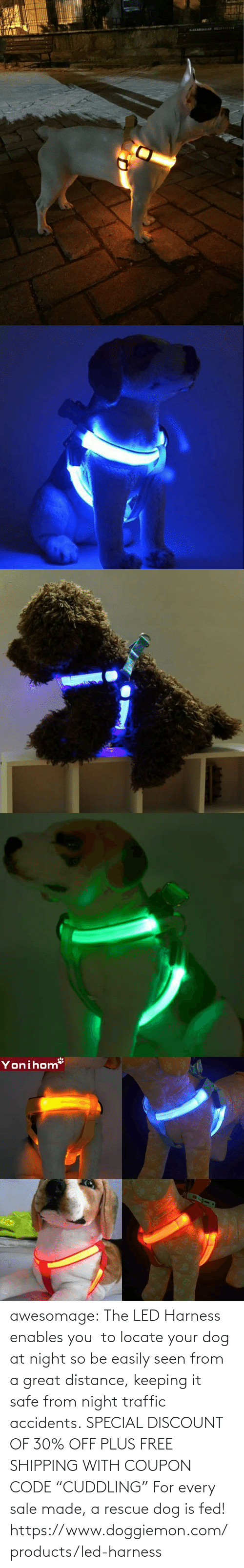 "At Night: awesomage:   The LED Harness enables you  to locate your dog at night so be easily seen from a great distance, keeping it safe from night traffic accidents. SPECIAL DISCOUNT OF 30% OFF PLUS FREE SHIPPING WITH COUPON CODE ""CUDDLING"" For every sale made, a rescue dog is fed!   https://www.doggiemon.com/products/led-harness"