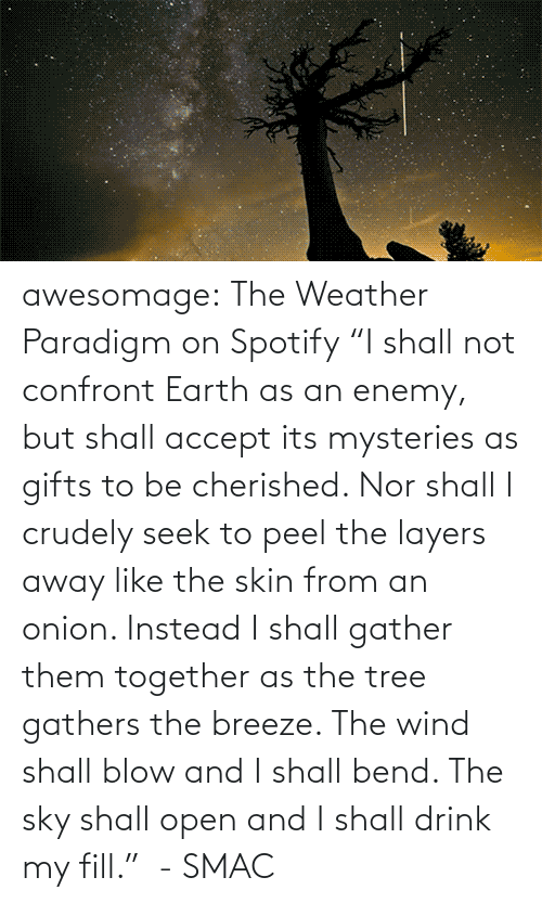 "wind: awesomage:   The Weather Paradigm on Spotify   ""I shall not confront Earth as an enemy, but shall accept its mysteries as gifts to be cherished. Nor shall I crudely seek to peel the layers away like the skin from an onion. Instead I shall gather them together as the tree gathers the breeze. The wind shall blow and I shall bend. The sky shall open and I shall drink my fill.""  - SMAC"