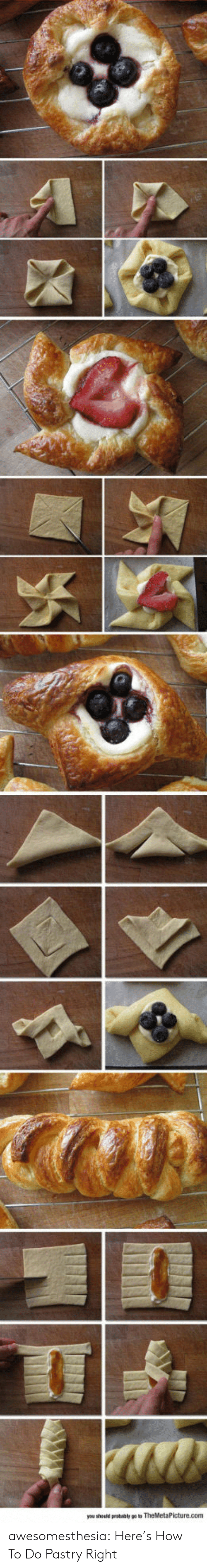 Tumblr, Blog, and How To: awesomesthesia:  Here's How To Do Pastry Right