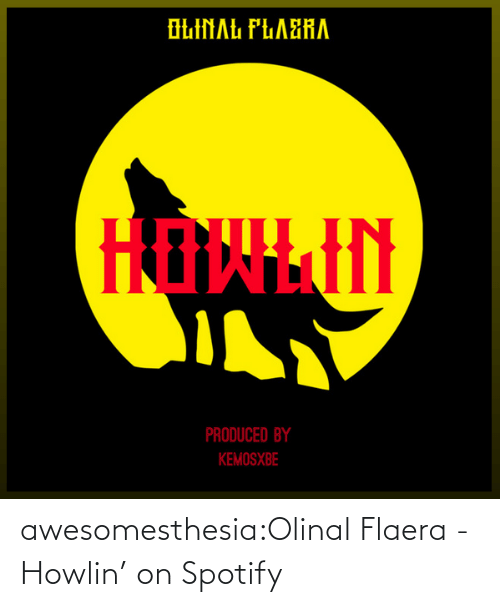 Spotify: awesomesthesia:Olinal Flaera - Howlin' on Spotify