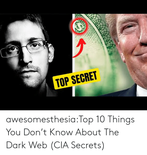 V: awesomesthesia:Top 10 Things You Don't Know About The Dark Web (CIA Secrets)