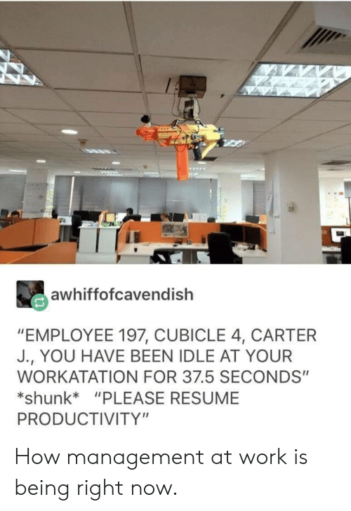"productivity: awhiffofcavendish  ""EMPLOYEE 197, CUBICLE 4, CARTER  J., YOU HAVE BEEN IDLE AT YOUR  WORKATATION FOR 37.5 SECONDS""  shunk*""PLEASE RESUME  PRODUCTIVITY"" How management at work is being right now."