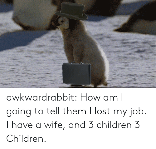 Children, Tumblr, and Lost: awkwardrabbit:  How am I going to tell them I lost my job. I have a wife, and 3 children 3 Children.