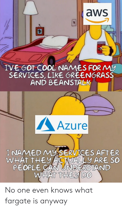 Cool, Got, and Aws: aws  IVE GOT COOL NAMES FORMy  SERVICES, LIKE GREENGRASS  AND BEANSTALK  Azure  I NAMED MYSERVICES AFTER  WHAT THEACTUALLY ARE SO  PEOPLE CAN UNDERSTAND  WHATTHEVDO No one even knows what fargate is anyway