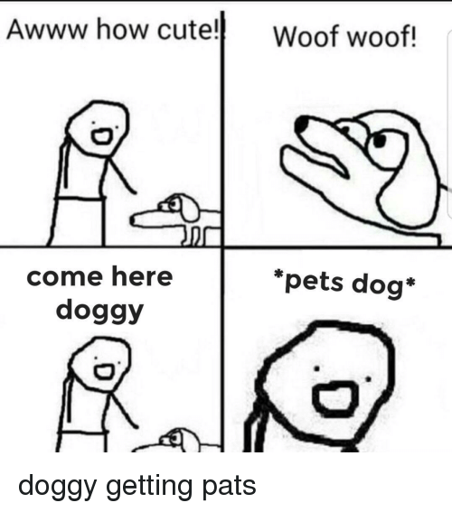 Cute, Pets, and Awww: Awww how cute! Woof woof!  *pets dog*  come here  doggy doggy getting pats