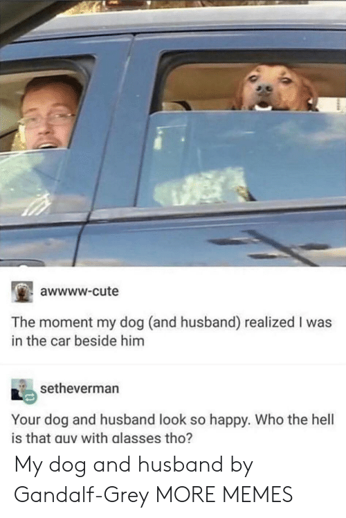 Gandalf: awwww-cute  The moment my dog (and husband) realized I was  in the car beside him  setheverman  Your dog and husband look so happy. Who the hell  is that guy with glasses tho? My dog and husband by Gandalf-Grey MORE MEMES