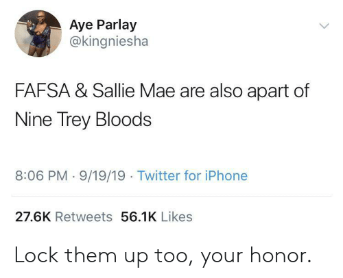 FAFSA: Aye Parlay  @kingniesha  FAFSA & Sallie Mae are also apart of  Nine Trey Bloods  8:06 PM 9/19/19 Twitter for iPhone  27.6K Retweets 56.1K Likes Lock them up too, your honor.