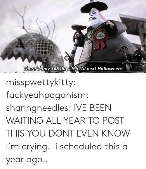 a-year-ago: AYOR  There's only 365 days left til next Halloween! misspwettykitty:  fuckyeahpaganism:  sharingneedles: IVE BEEN WAITING ALL YEAR TO POST THIS YOU DONT EVEN KNOW I'm crying.  i scheduled this a year ago..