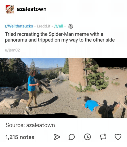 Meme, Spider, and SpiderMan: azaleatown  r/Wellthatsucks i.redd.it /r/all  Tried recreating the Spider-Man meme with a  panorama and tripped on my way to the other side  /jsm02  Source: azaleatown  1,215 notes