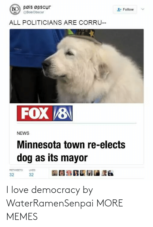 town: Bøis Øpscur  BO  Follow  @BoisObscur  ALL POLITICIANS ARE CORRU--  FOX 8  NEWS  Minnesota town re-elects  dog as its mayor  LIKES  RETWEETS  32  32 I love democracy by WaterRamenSenpai MORE MEMES