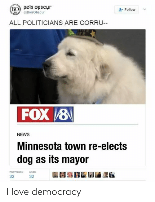 Democracy: Bøis Øpscur  BO  Follow  @BoisObscur  ALL POLITICIANS ARE CORRU--  FOX 8  NEWS  Minnesota town re-elects  dog as its mayor  LIKES  RETWEETS  32  32 I love democracy