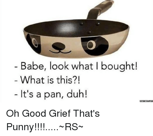 Punnies: Babe, look what l bought!  What is this?!  It's a pan, duh!  memes  Om Oh Good Grief That's Punny!!!!.....~RS~
