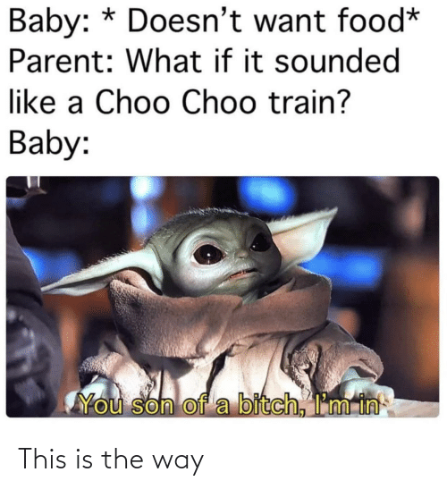 Train: Baby: * Doesn't want food*  Parent: What if it sounded  like a Choo Choo train?  Baby:  You son of a bitch, I'm in This is the way