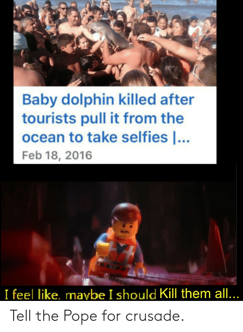 the pope: Baby dolphin killed after  tourists pull it from the  ocean to take selfies ...  Feb 18, 2016  I feel like, maybe I should Kill them all... Tell the Pope for crusade.