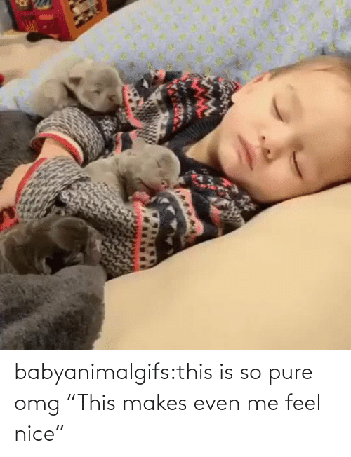 """Nice: babyanimalgifs:this is so pure omg   """"This makes even me feel nice"""""""