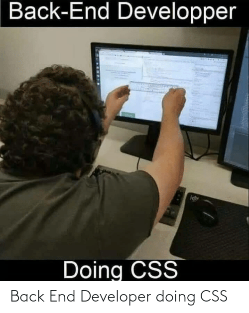 developer: Back End Developer doing CSS