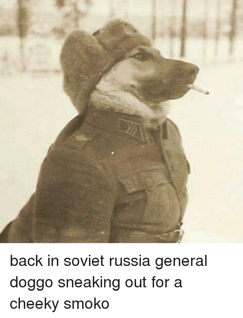 soviet russia: back in soviet russia general doggo sneaking out for a cheeky smoko