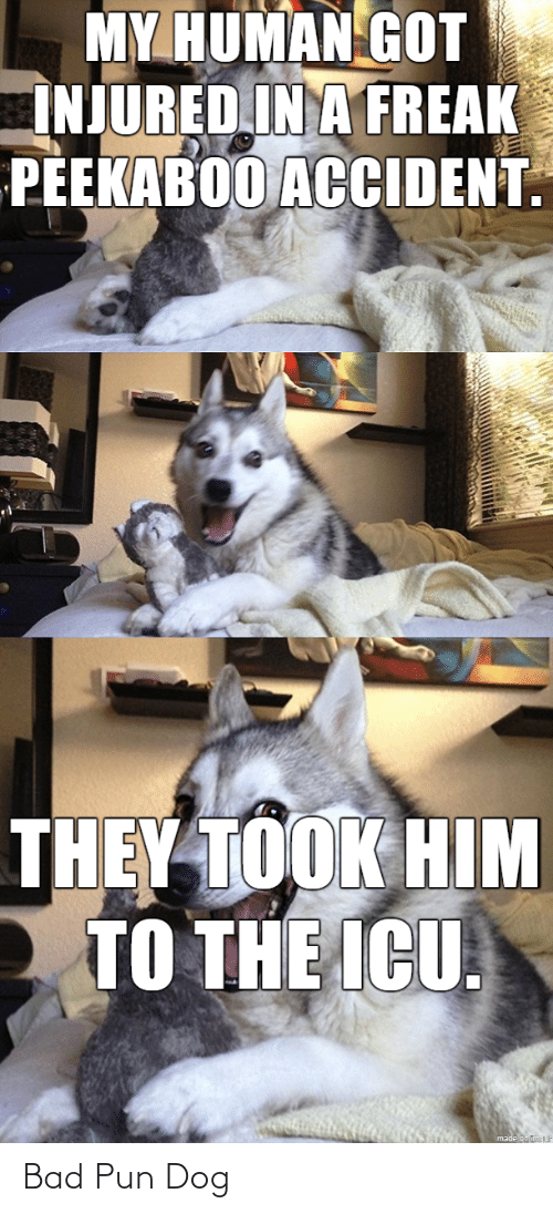 pun: Bad Pun Dog