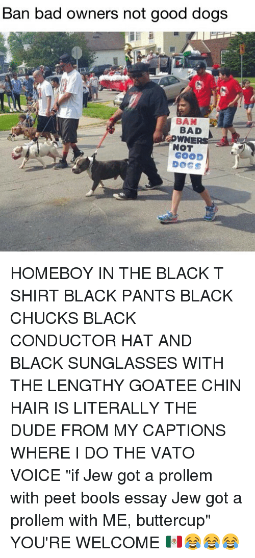 "pantsed: Ban bad owners not good dogs  BAD  NOT  GOOD  DOGS HOMEBOY IN THE BLACK T SHIRT BLACK PANTS BLACK CHUCKS BLACK CONDUCTOR HAT AND BLACK SUNGLASSES WITH THE LENGTHY GOATEE CHIN HAIR IS LITERALLY THE DUDE FROM MY CAPTIONS WHERE I DO THE VATO VOICE ""if Jew got a prollem with peet bools essay Jew got a prollem with ME, buttercup"" YOU'RE WELCOME 🇲🇽😂😂😂"