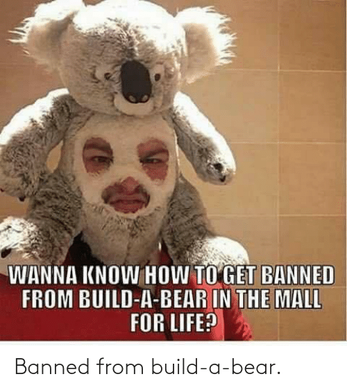 build: Banned from build-a-bear.
