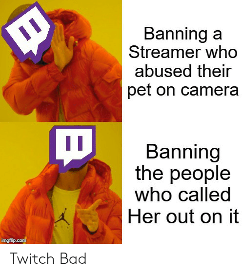 Banning: Banning a  Streamer who  abused their  pet on camera  Banning  the people  who called  Her out on it  imgflip.com Twitch Bad