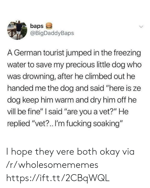 """Fucking, Precious, and Okay: baps  @BigDaddyBaps  A German tourist jumped in the freezing  water to save my precious little dog who  was drowning, after he climbed out he  handed me the dog and said """"here is ze  dog keep him warm and dry him off he  vill be fine"""" I said """"are you a vet?"""" He  replied """"vet?.. I'm fucking soaking"""" I hope they vere both okay via /r/wholesomememes https://ift.tt/2CBqWQL"""