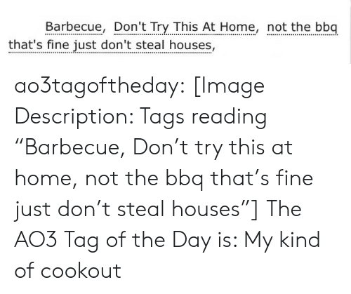 "Dont Try: Barbecue, Don't Try This At Home, not the bbq  that's fine just don't steal houses, ao3tagoftheday:  [Image Description: Tags reading ""Barbecue, Don't try this at home, not the bbq that's fine just don't steal houses""]  The AO3 Tag of the Day is: My kind of cookout"