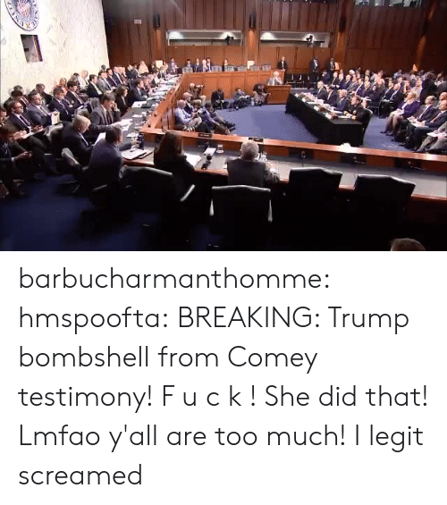 Too Much, Tumblr, and Blog: barbucharmanthomme: hmspoofta:  BREAKING: Trump bombshell from Comey testimony!  F u c k ! She did that! Lmfao y'all are too much!  I legit screamed