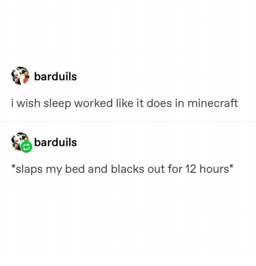 Minecraft, Sleep, and For: barduils  i wish sleep worked like it does in minecraft  barduils  *slaps my bed and blacks out for 12 hours*