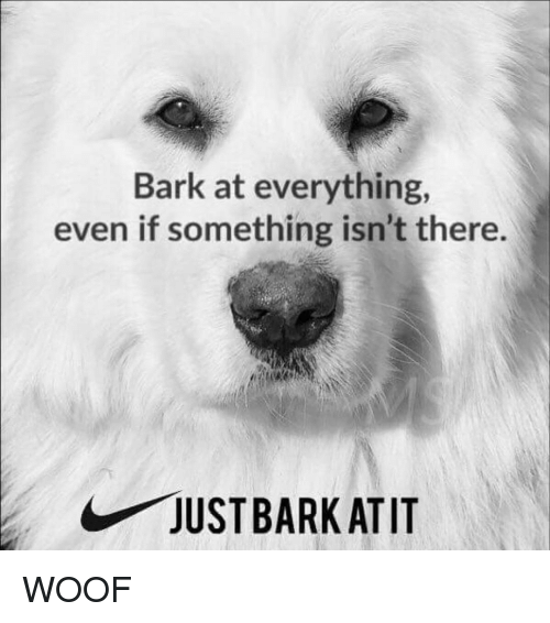 Funny, Everything, and Woof: Bark at everything,  even if something isn't there.  JUSTBARKATIT WOOF