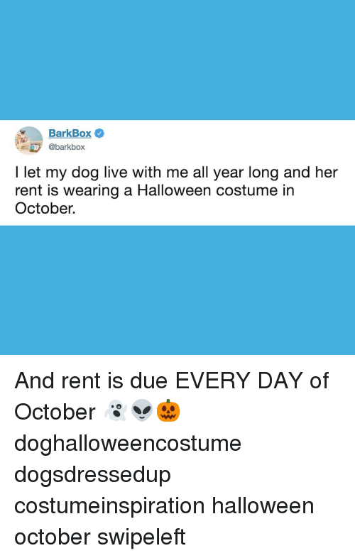 Halloween, Memes, and Live: BarkBox  @barkbox  I let my dog live with me all year long and her  rent is wearing a Halloween costume in  October. And rent is due EVERY DAY of October 👻👽🎃 doghalloweencostume dogsdressedup costumeinspiration halloween october swipeleft