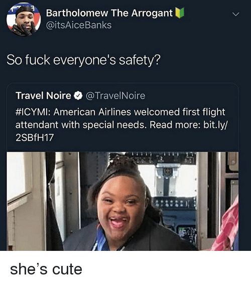 Special Needs: Bartholomew The Arrogant  @itsAiceBanks  So fuck everyone's safety?  Travel Noire @TravelNoire  #ICYMI: American Airlines welcomed first flight  attendant with special needs. Read more: bit.ly/  2SBfH17 she's cute