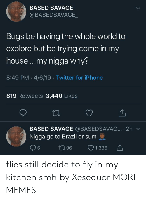 Dank, Iphone, and Memes: BASED SAVAGE  @BASEDSAVAGE  Bugs be having the whole world to  explore but be trying come in my  house .. my nigga why?  8:49 PM 4/6/19 Twitter for iPhone  819 Retweets 3,440 Likes  BASED SAVAGE @BASEDSAVAG.·.. 2h ﹀  Nigga go to Brazil or sum  06 t196 1,336 flies still decide to fly in my kitchen smh by Xesequor MORE MEMES
