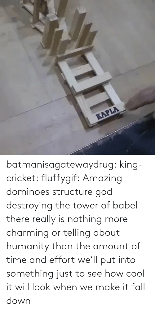 Dominoes: batmanisagatewaydrug: king-cricket:  fluffygif:  Amazing dominoes structure    god destroying the tower of babel  there really is nothing more charming or telling about humanity than the amount of time and effort we'll put into something just to see how cool it will look when we make it fall down