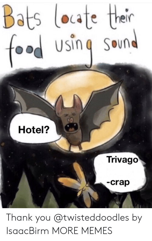 crap: Bats loate their  foad using sound  Hotel?  Trivago  -crap Thank you @twisteddoodles by IsaacBirm MORE MEMES