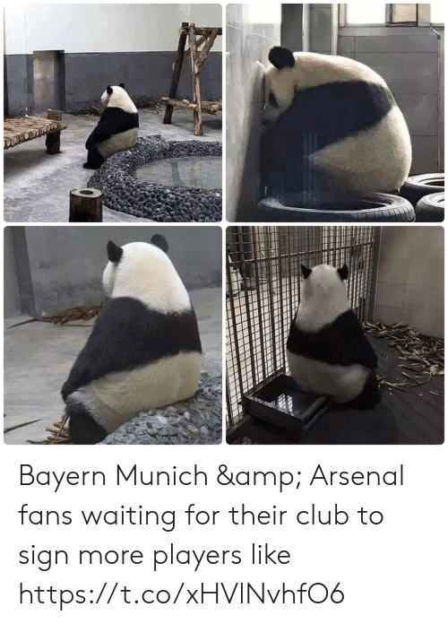 Bayern: Bayern Munich & Arsenal fans waiting for their club to sign more players like https://t.co/xHVlNvhfO6
