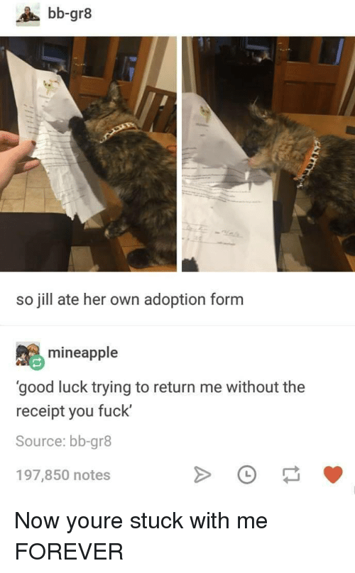 Forever, Fuck, and Good: bb-gr8  so jill ate her own adoption form  mineapple  'good luck trying to return me without the  receipt you fuck'  Source: bb-gr8  197,850 notes Now youre stuck with me FOREVER