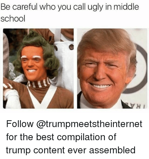 Memes, School, and Ugly: Be careful who you call ugly in middle  school  H1 Follow @trumpmeetstheinternet for the best compilation of trump content ever assembled