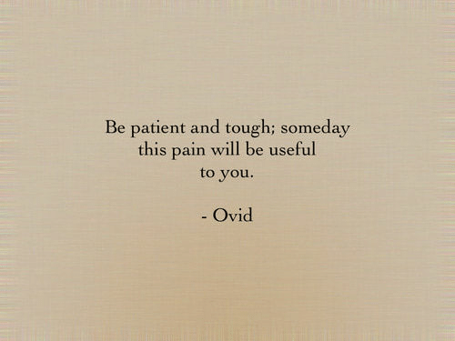 Patient, Tough, and Pain: Be patient and tough; someday  this pain will be useful  to you.  Ovid