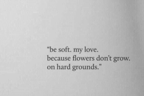 "Love, Flowers, and Grow: ""be soft. my love  because flowers don't grow.  on hard grounds."